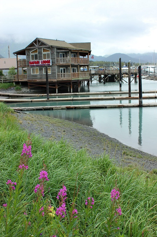 The harbour in Seward, Alaska