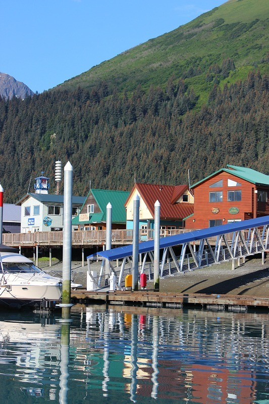 Seward's Small Boat Harbour on the edge of Kenai Fjords National Park