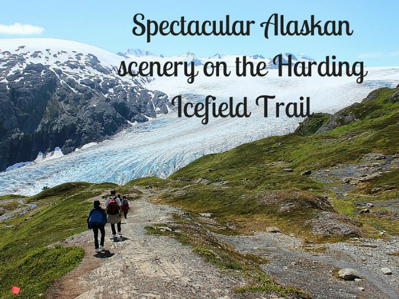 Spectacular Alaskan scenery on the Harding Icefield Trail