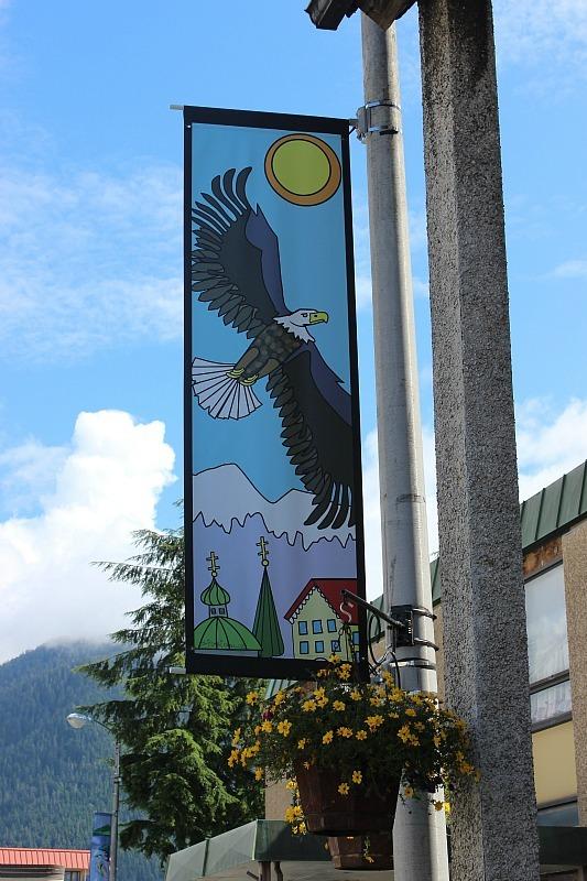 Bald eagles everywhere in Sitka Alaska