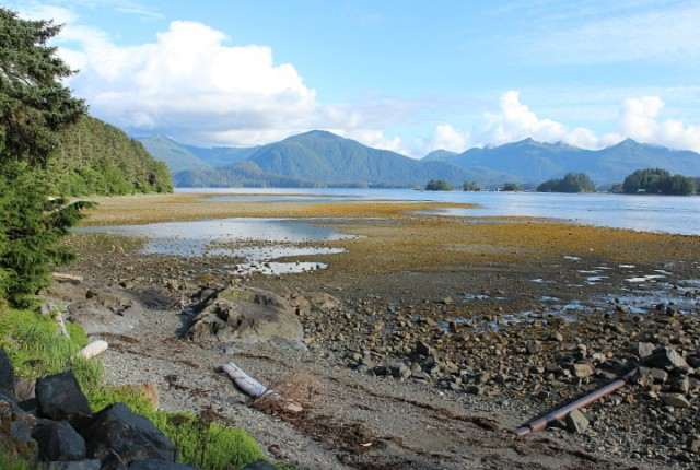 Beautiful Sitka coastline