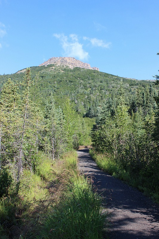 Start of Mount Healy hike