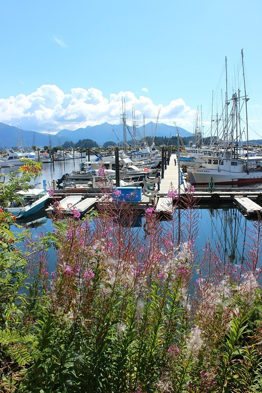 Summer in Sitka Alaska