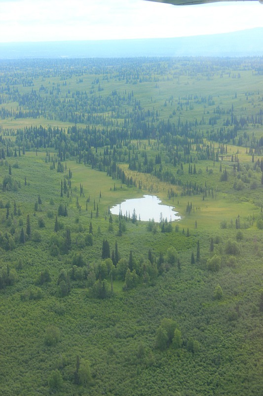 Talkeetna surrounds from a Denali Flight tour