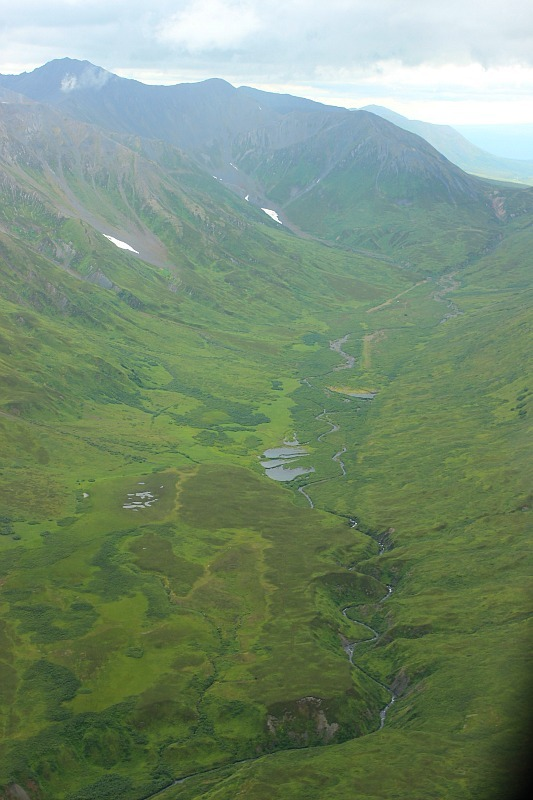 Verdant Valleys around Talkeetna