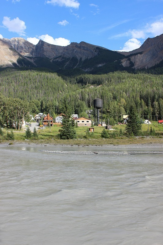 Field from across the Kicking Horse river