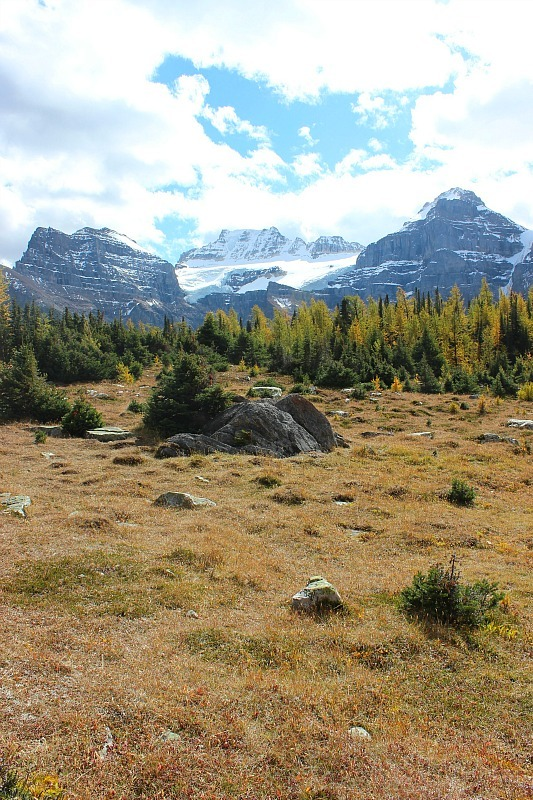 Beautiful scenery in the Larch Valley - one of the best fall hikes in Banff National Park