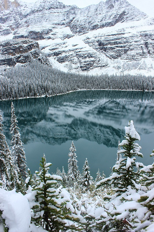 Lake O'Hara after snow fall