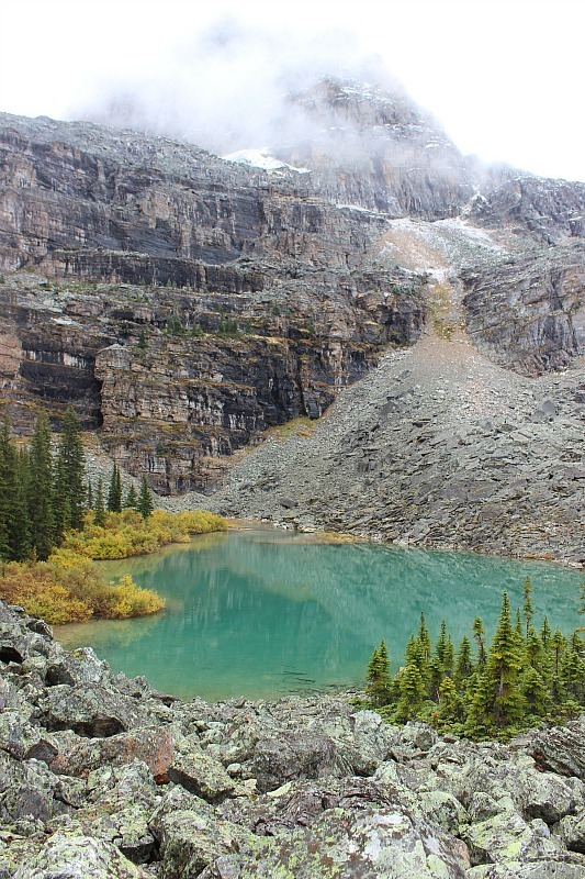 Lake in Lake O'Hara area
