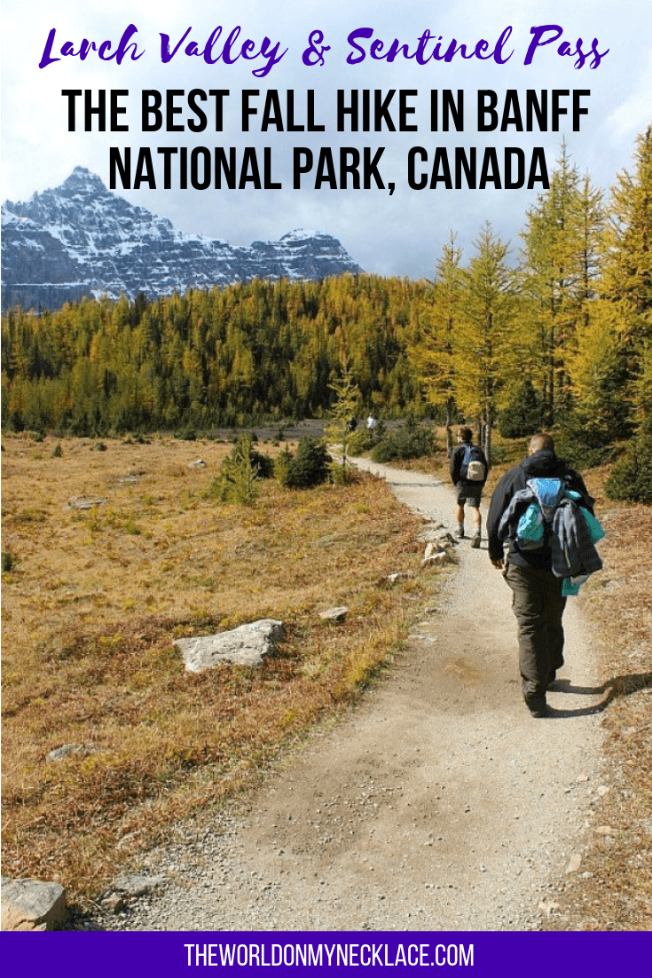 Larch Valley Hike and Sentinel Pass Hike: The Best Moraine Lake hike to do in Fall