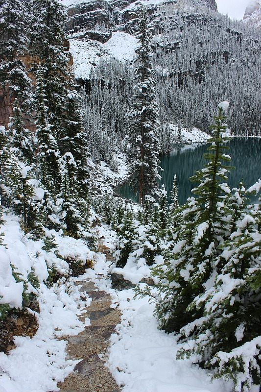 Snow covered path down to Lake O'Hara