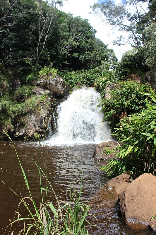Hidden waterfall at Waimea Canyon - Kauai Hiking Adventures