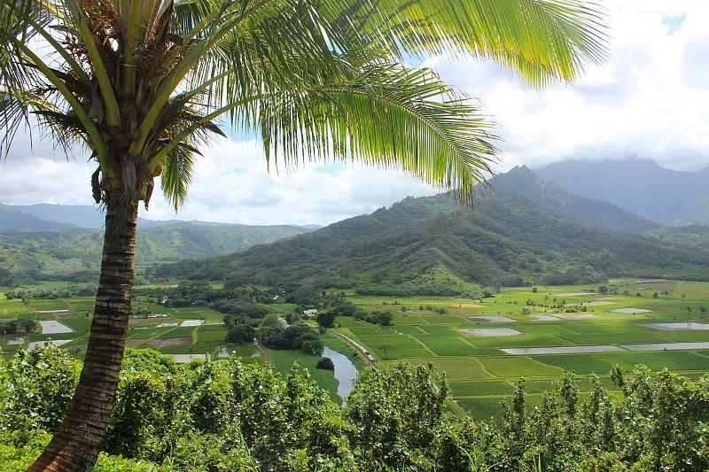 Lush Kauai, the Garden Island