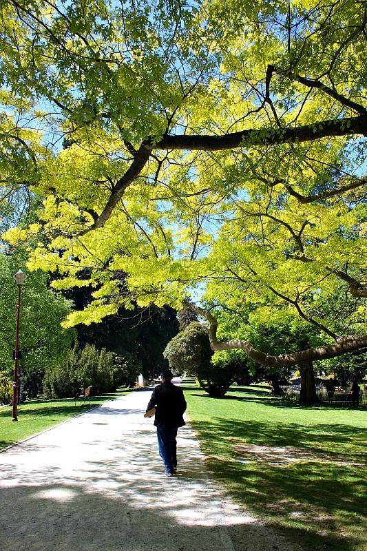 Queenstown Botanical Gardens in the Otago Region of New Zealand