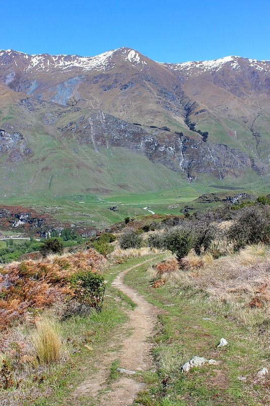 Rocky Mountain trail in Wanaka