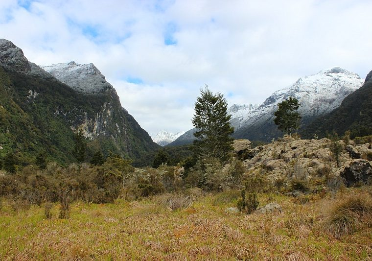 Beautiful Valley on Day Three of the Kepler Track, one of NZ's Great Walks