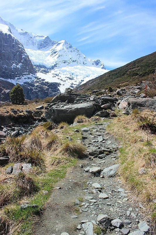 Trail in Mount Aspiring National Park to Rob Roy Glacier
