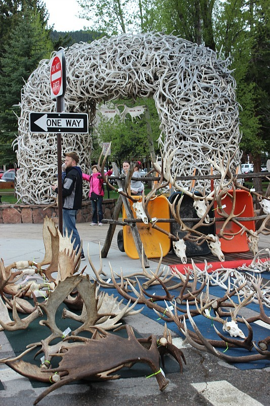 Antler sale in Jackson Hole