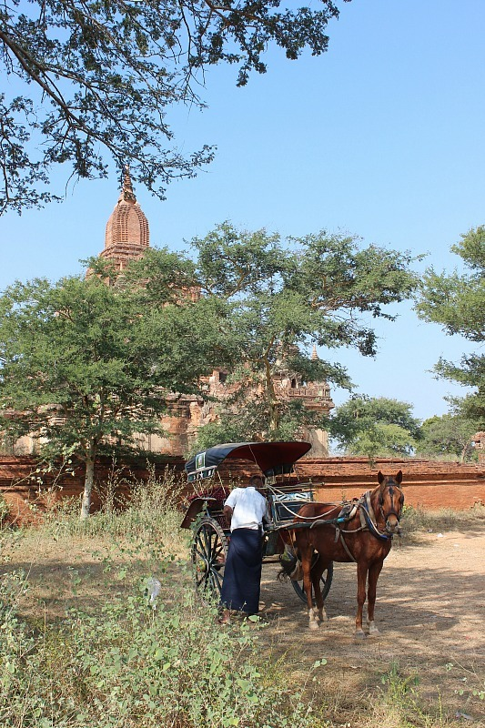 Horse and cart in front of one of the Bagan Pagodas