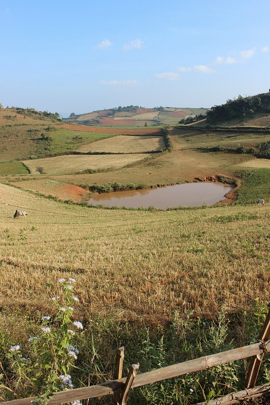 Patchwork fields while on our three day hike from Kalaw to Inle Lake