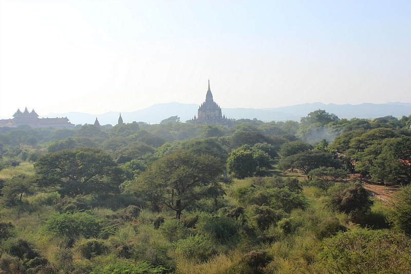 View from Shwegugyi Pahto over Bagan pagodas