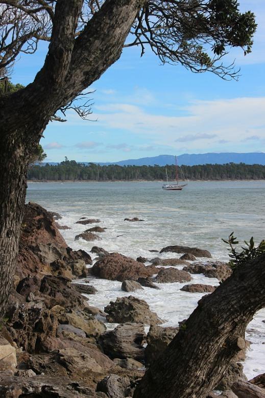 View over to Matakana Island, Tauranga NZ during month 13 of digital nomad life