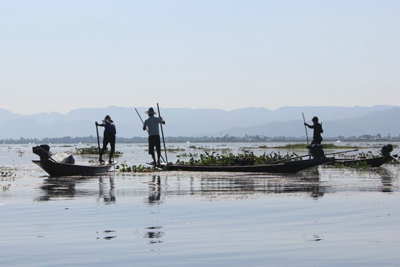 Group of Fishermen on Inle Lake as seen from an Inle Lake boat trip