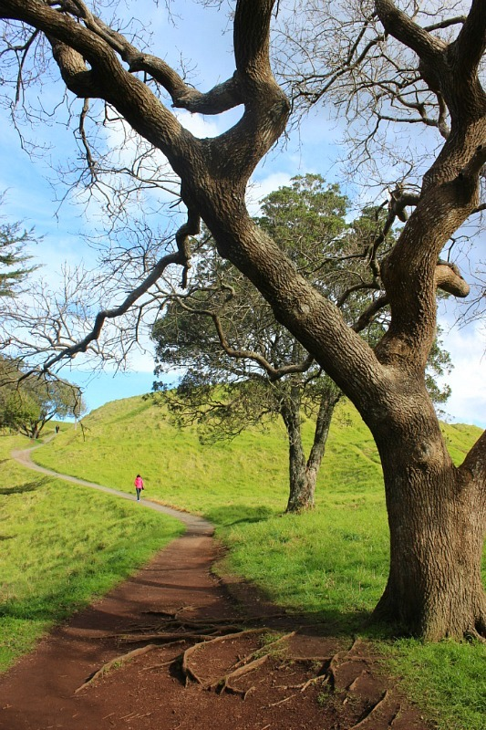 Hiking to Mt Eden Summit during month 14 of digital nomad life - The World on my Necklace