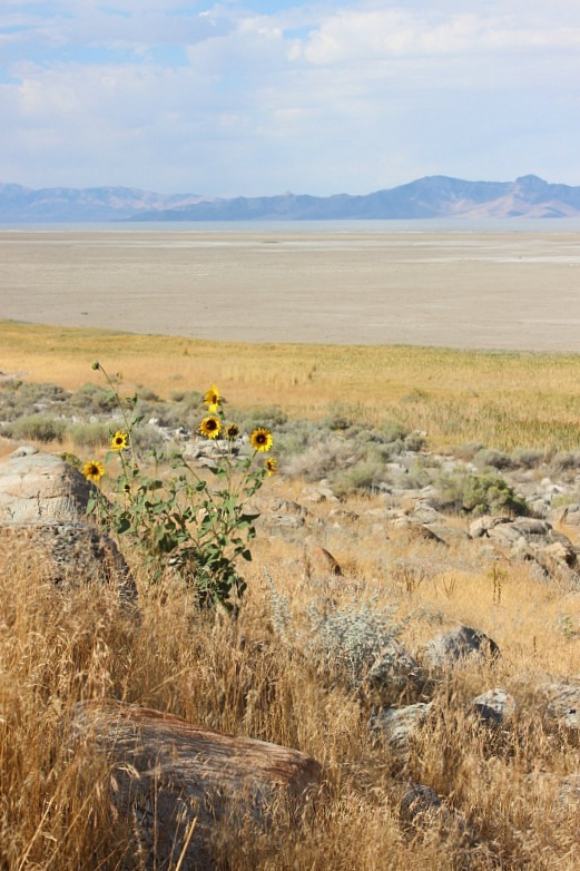 antelope-island-the-world-on-my-necklace