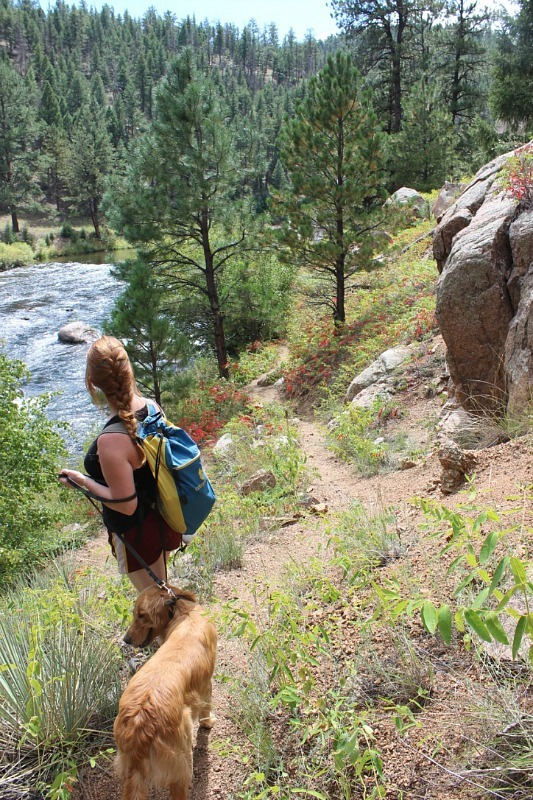 Hiking in Pike National Forest during month 15 of digital nomad life
