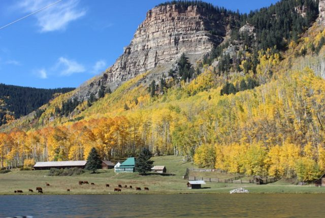 fall-colours-near-ouray