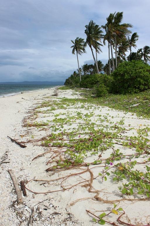 quiet-side-of Kalanggaman Island