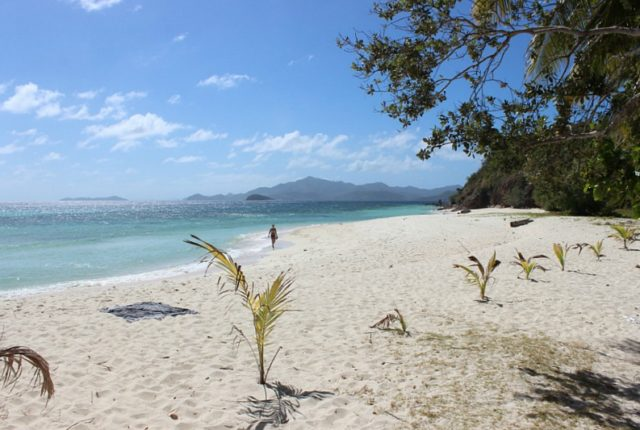 malcapuya-island