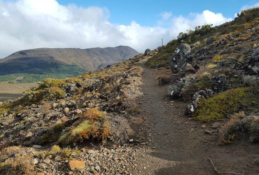 Hiking the Tongariro Circuit during month twenty two of digital nomad life