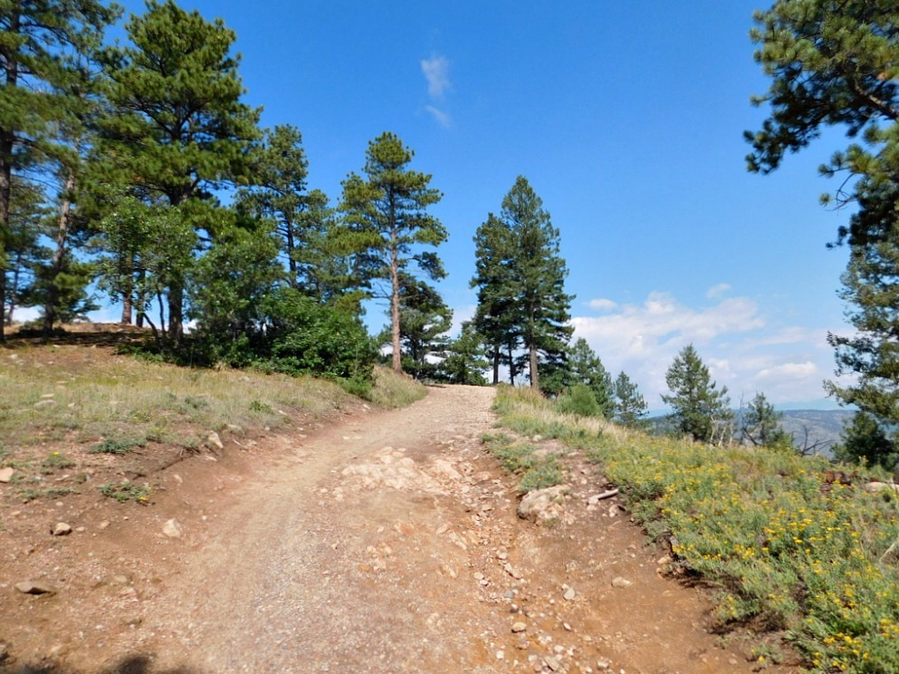 Hiking Mt Falcon in Colorado during month twenty six of Digital Nomad Life