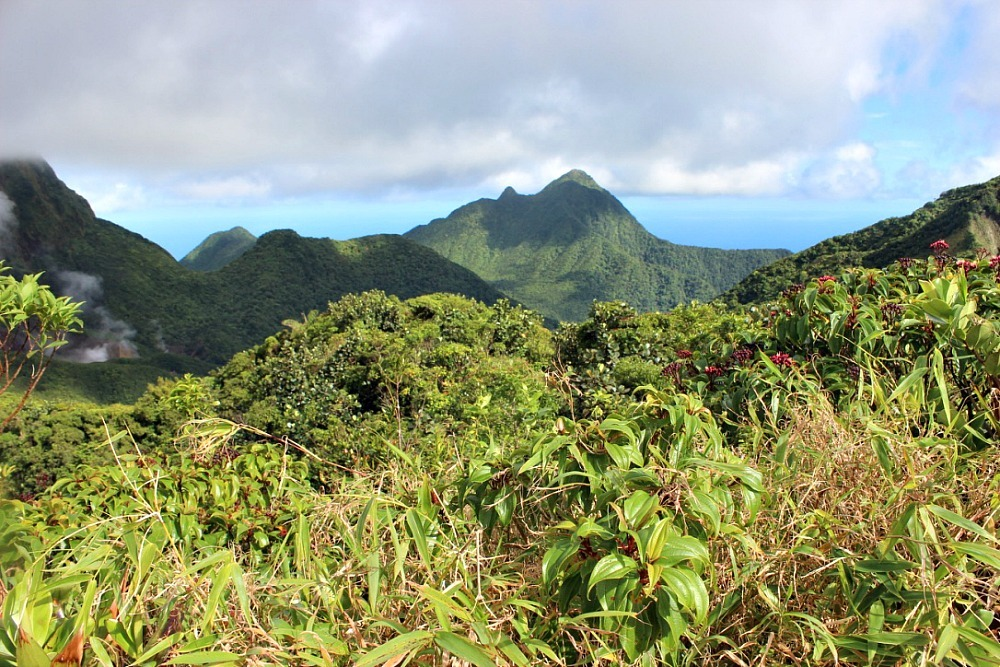 Amazing views on the way to the Boiling Lake in Dominica