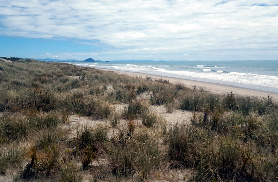 Hanging out on the beach in Papamoa during month twenty nine of Digital Nomad Life