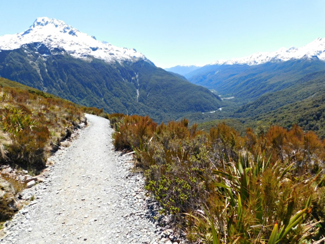 Hiking part of the Routeburn Track in New Zealand - a 2017 highlight of Digital Nomad Life