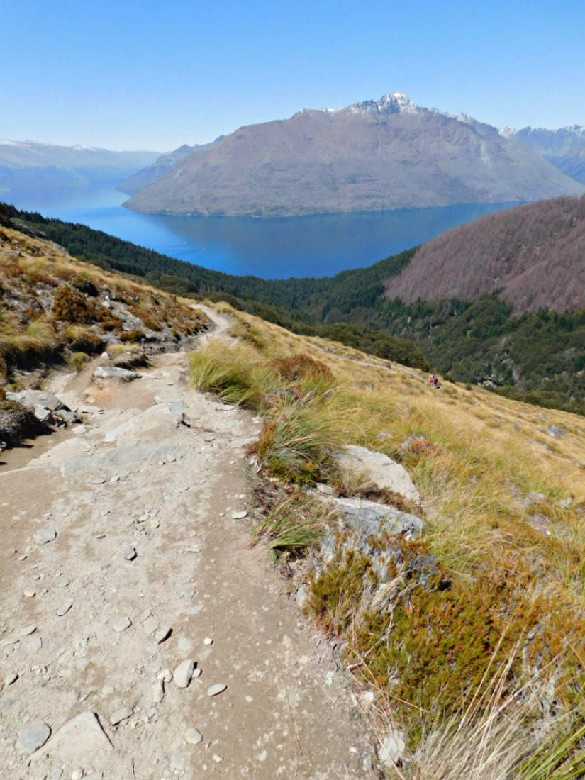 Hiking to the Ben Lomond summit in New Zealand during month twenty nine of Digital Nomad Life