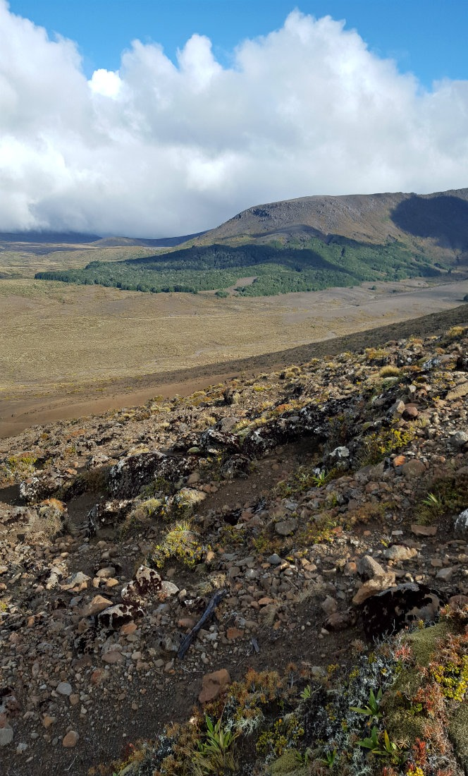 Amazing views from the ridgeline on on day two of the Tongariro Northern Circuit