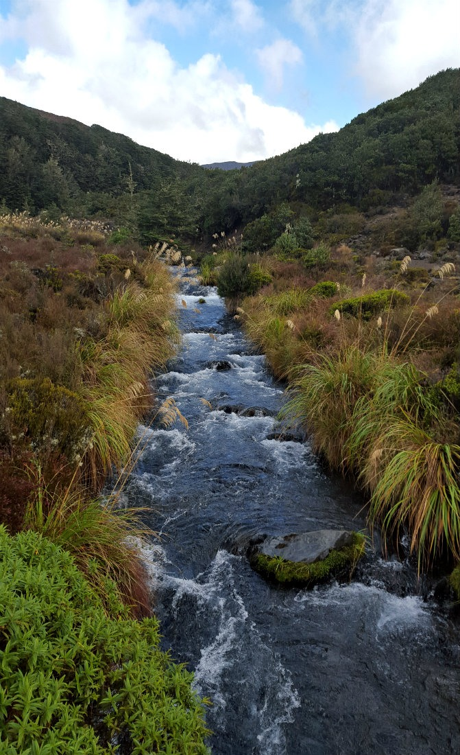 River crossing on day two of the Tongariro Northern Circuit