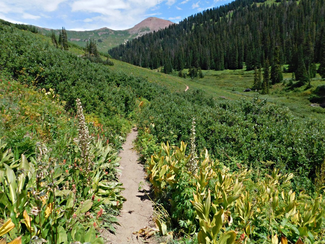 Meadow on the Crested Butte side of West Maroon Pass on the hike from Aspen to Crested Butte in Maroon Bells-Snowmass Wilderness