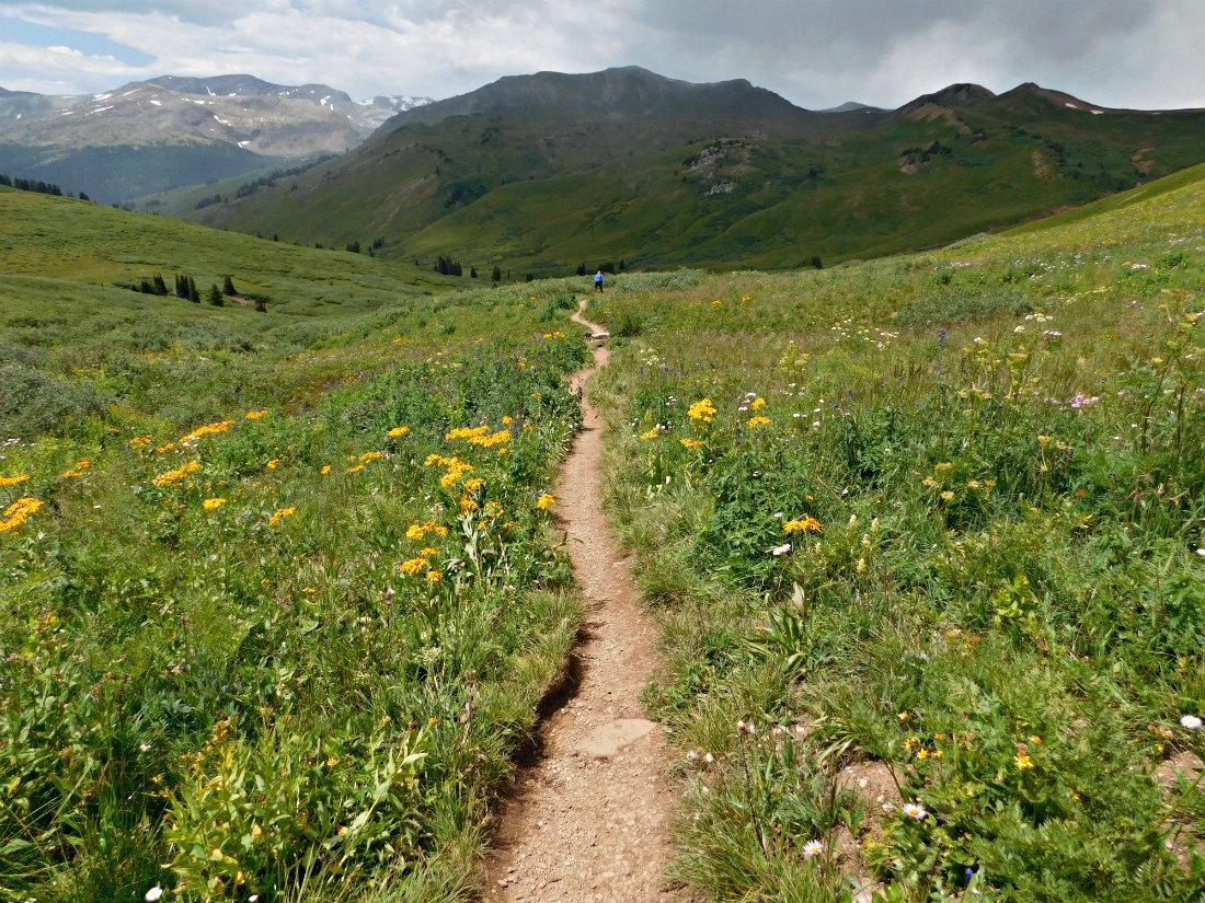 Wild flower filled meadow on the West Maroon Pass trail hike from Aspen to Crested Butte