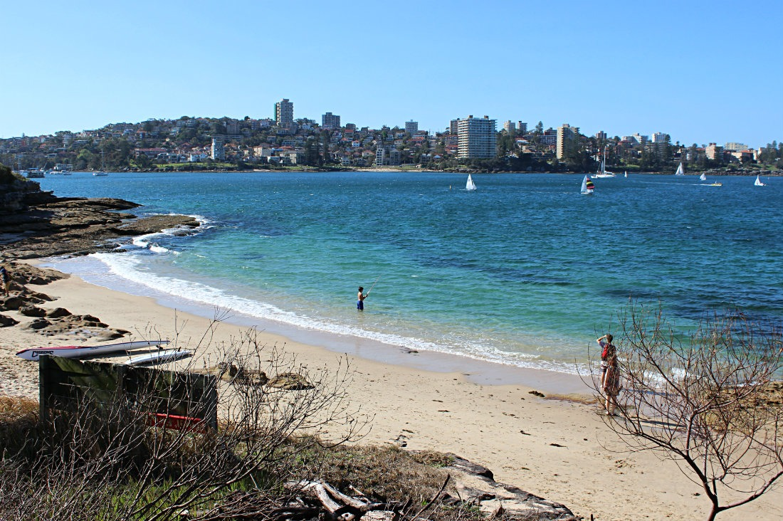 Beach along the Manly to Spit Bridge walk in Sydney