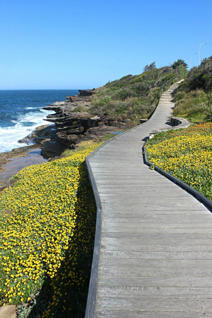 The Bondi to Coogee Walk in Sydney, Australia
