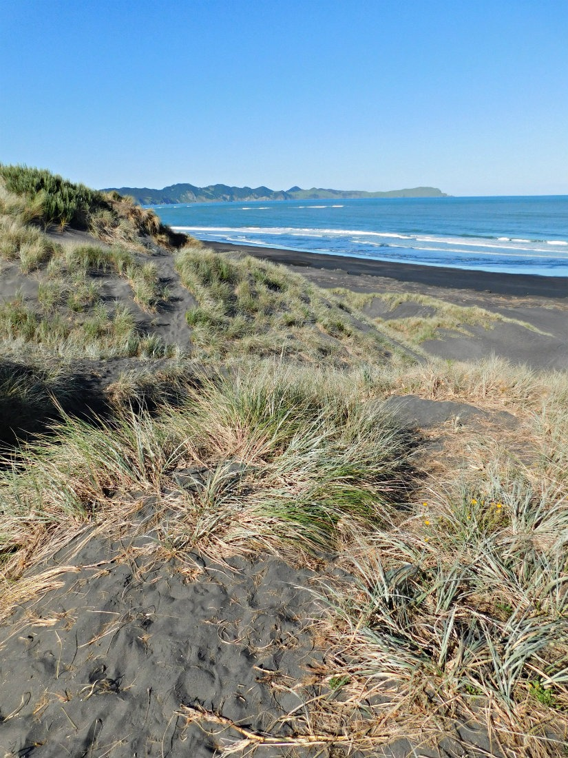 A travel bucket list item for 2018 was roadtripping the North Island of New Zealand