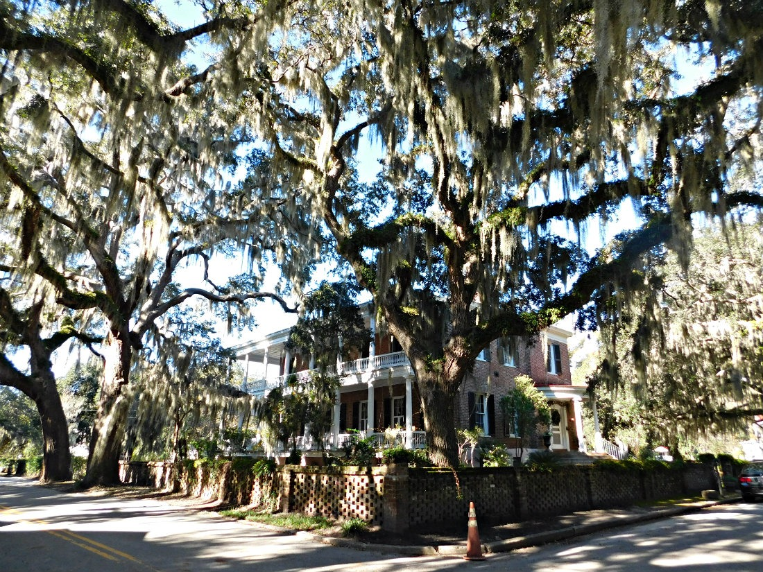 Visiting the historic town of Beaufort was one of highlights of month forty two of Digital Nomad Life