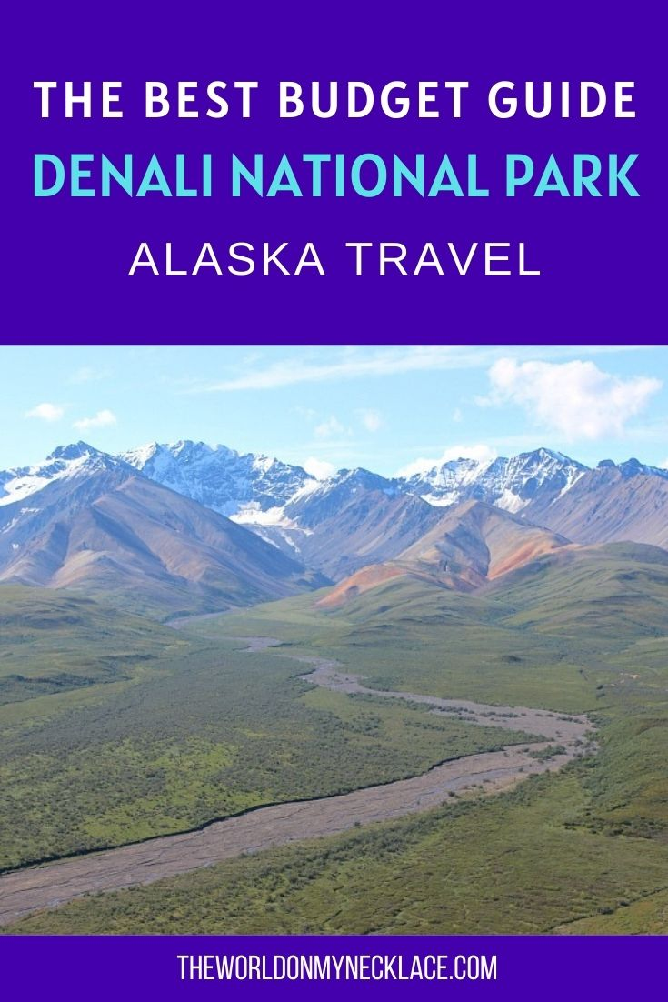 The Best Budget Guide to Denali National Park