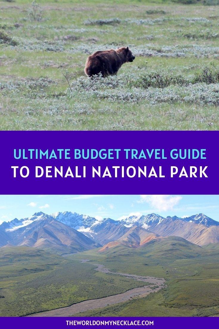 Ultimate Budget Travel Guide to Denali National Park Alaska