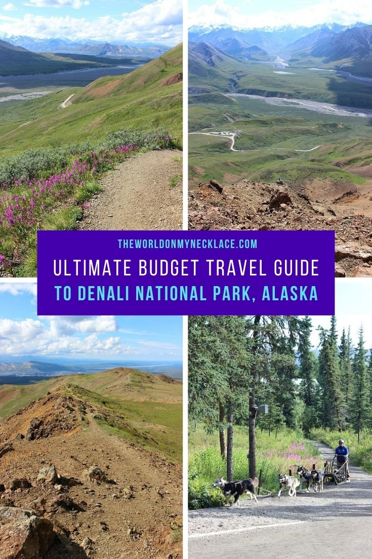 Ultimate Budget Travel Guide to Denali National Park